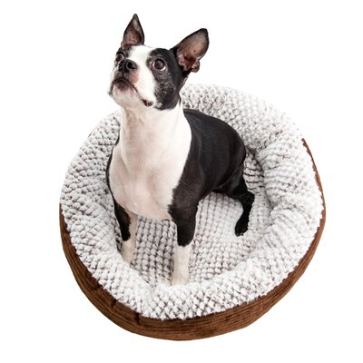 Caden Pet Bolster Size: Large (24 W x 24 D), Color: Chocolate
