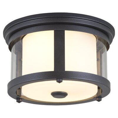 Niagara  2-Light Flush Mount