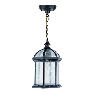 Hexagon 1-Light Outdoor Hanging Lantern Shade Type: Seedy