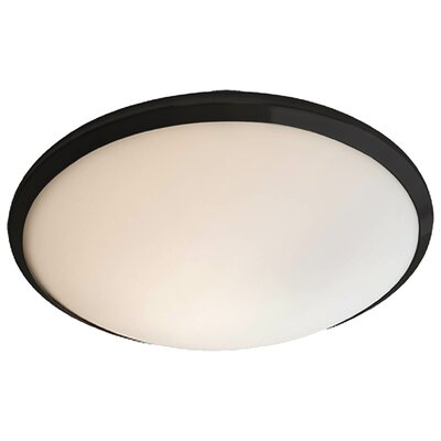 Essex 1-Light Flush Mount Shade Color: Half Opal, Finish: Graphite