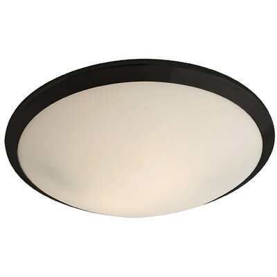 Essex 2-Light Flush Mount Finish: Graphite, Shade Color: Half Opal