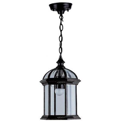 Hexagon 1-Light Outdoor Hanging Lantern Shade Type: Clear Beveled