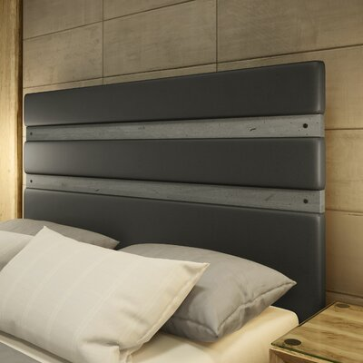 Dunder Upholstered Panel Headboard Size: Queen, Color: Charcoal/Gray
