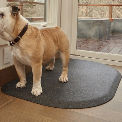 Pet Mat Color: Silver Haven, Size: Large: (45 L x 30 W)