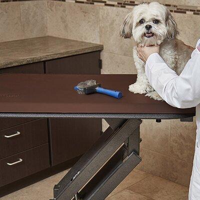 Pet Mat Color: Brown, Size: Small: (28 L x 17 W)