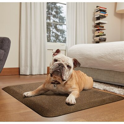 Pet Mat Color: Golden Retreat, Size: Large: (40 L x 26 W)