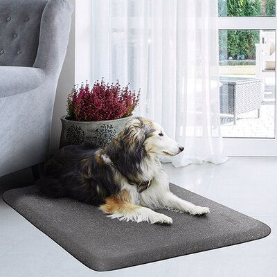 Pet Mat Color: Silver Haven, Size: Large: (40 L x 26 W)