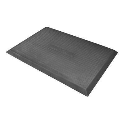 Maxum Solid Kitchen Mat Rug Size: Rectangle 2 x 3