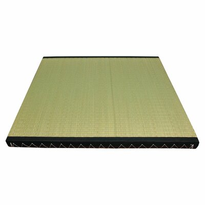 Christofor Rectangle Half Size Green Area Rug Rug Size: 3 x 3