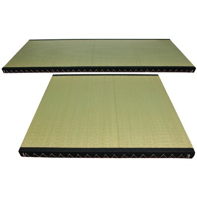 Christofor Solid Green Rush Grass Area Rug