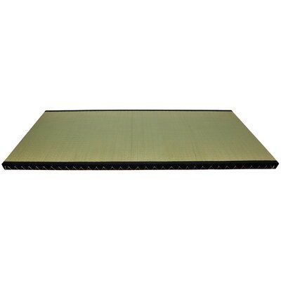 Christofor Green Area Rug Rug Size: 28 x 67
