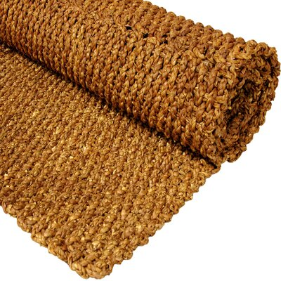 Honey Solid Area Rug Rug Size: 111 x 211