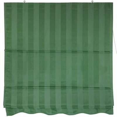 Room Darkening Roman Shade Size: 36 W x 72 L, Color: Soft Green
