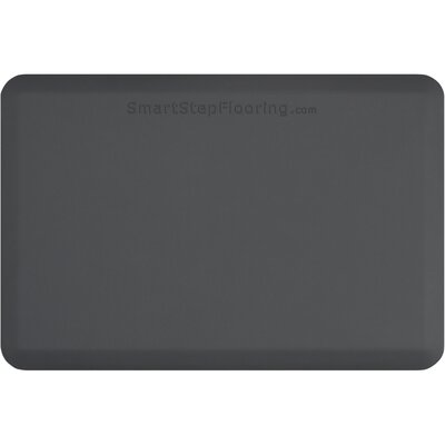 Solid Utility Mat Color: Gray, Mat Size: Rectangle 3 x 2