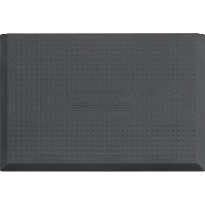 Solid Utility Mat Color: Gray, Mat Size: Rectangle 5 x 3