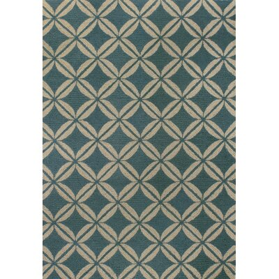 Rajapur Teal Rug Rug Size: Rectangle 7 x 9
