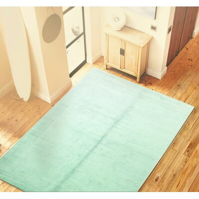 Opulent Hand Woven Aqua Area Rug Rug Size: Rectangle 56 x 86