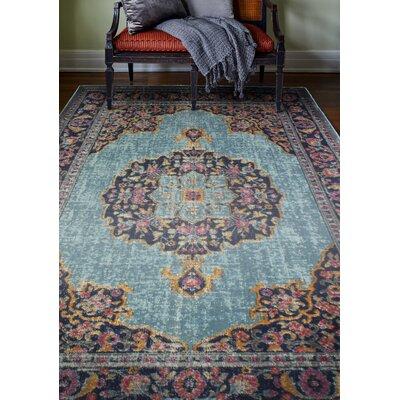 Ashburn Teal Area Rug Rug Size: 38 x 56