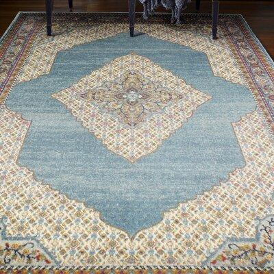 Alperin Teal Area Rug Rug Size: 36 x 56