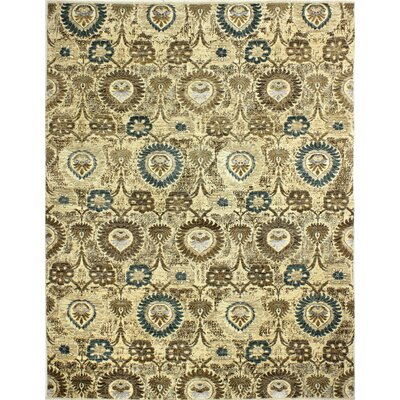 One-of-a-Kind Hartness Hand Woven Wool Ivory Area Rug