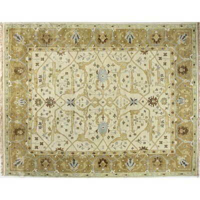Charleston Ivory/Gold Area Rug Rug Size: Rectangle 59 x 89