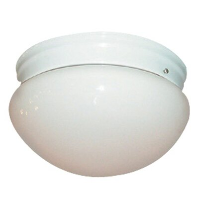 Basic 2-Light Flush Mount Finish: White