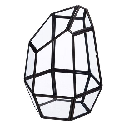 Prism Novelty Glass Terrarium 2GPL027