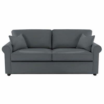 Madison Queen Sleeper Sofa Upholstery: Charcoal