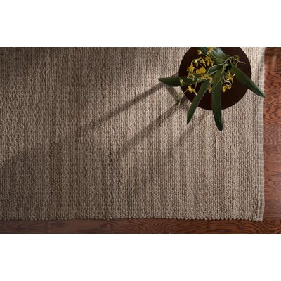 Channelle Gingham Stripe Hand-Woven Gray Area Rug Rug Size: Rectangle 5 x 79