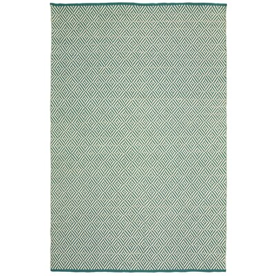 Johnstown Inside-Out Hand-Woven Teal Indoor/Outdoor Area Rug Rug Size: 8 x 10