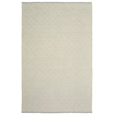 Johnstown Inside-Out Hand-Woven Light Gray Rectangle Indoor Area Rug Rug Size: 8 x 10