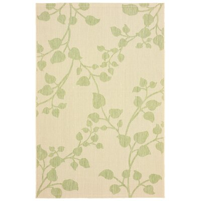 Prairie Reversible Green/Beige Indoor/Outdoor Area Rug Rug Size: 5 x 8