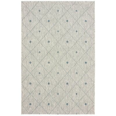 Dumas Reversible Blue/Gray Indoor/Outdoor Area Rug Rug Size: 5 x 8