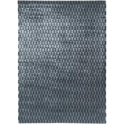 Super Grey Rug Rug Size: 5 x 7