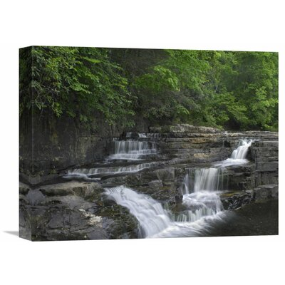 Nature Photographs Dismal Falls, Jefferson National Forest, Virginia by Tim Fitzharris Photographic Print on Canvas Size: 12