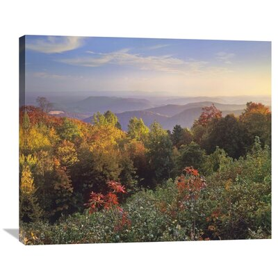 Nature Photographs Deciduous Forest in Autumn, Blue Ridge Mountains from Doughton Park, North Carolina Photographic Print on Wrapped Canvas GCS-397040-36-142