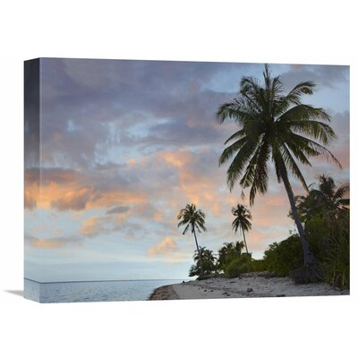 Nature Photographs Coconut Palm Trees Pamilacan Island Bohol Island Philippines by Tim Fitzharris Photographic Print on Canvas Size: 12
