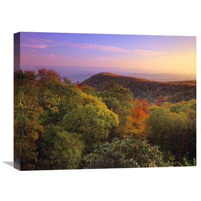 Nature Photographs Blue Ridge Mountains with Deciduous Forests in Autumn North Carolina by Tim Fitzharris Photographic Print on Wrapped Canvas GCS-396763-1824-142