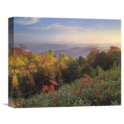 Nature Photographs Deciduous Forest in Autumn, Blue Ridge Mountains from Doughton Park, North Carolina Photographic Print on Wrapped Canvas GCS-397040-16-142