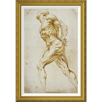'Anatomical Study: Nude Male' by Peter Paul Reubens Framed Painting Print GCF-265454-30-209