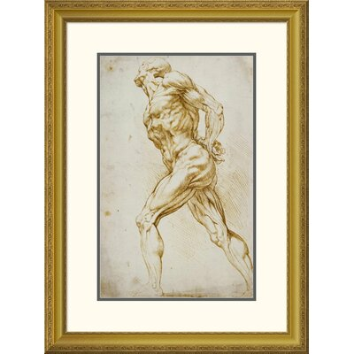 'Anatomical Study: Nude Male' by Peter Paul Reubens Framed Painting Print DPF-265454-22-109