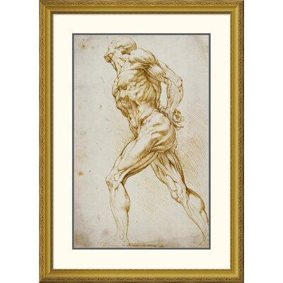 'Anatomical Study: Nude Male' by Peter Paul Reubens Framed Painting Print DPF-265454-30-109