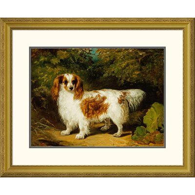 'A Blenheim Cavalier King Charles Spaniel' by H. Willis Framed Painting Print Size: 26.22