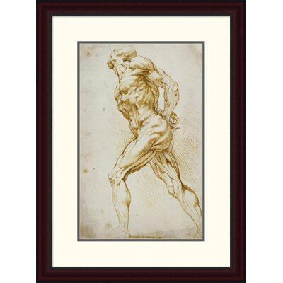 'Anatomical Study: Nude Male' by Peter Paul Reubens Framed Painting Print DPF-265454-22-289
