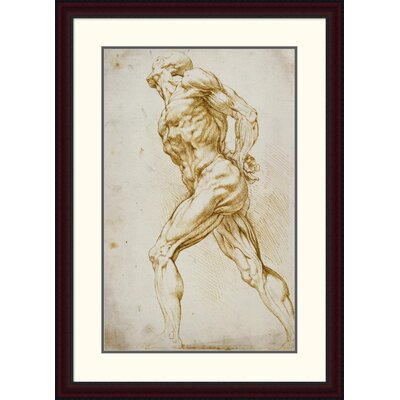 'Anatomical Study: Nude Male' by Peter Paul Reubens Framed Painting Print DPF-265454-30-289