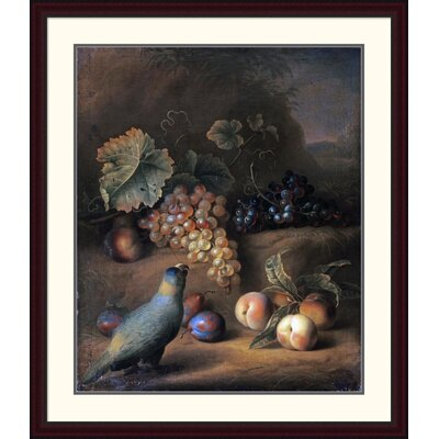 "'A Parrot with Grapes, Peaches and Plums in a Landscape' by Tobias Stranover Framed Painting Print Size: 44"" H x 37.75"" W x 1.5"" D DPF-265593-36-289"