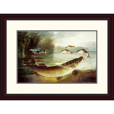 'A Kingfisher and a Pike Capturing Perch' by Henry Leonidas Rolfe Framed Painting Print Size: 22.41