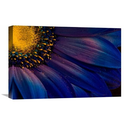 'Blue Rays' by Thorsteinn H. Ingibergsson Graphic Art on Wrapped Canvas GCS-462134-22-142