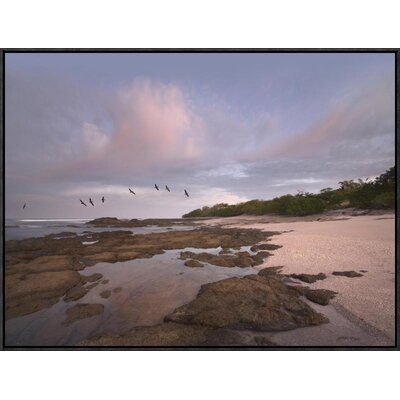 Pelicans over Playa Langosta, Guanacaste, Costa Rica by Tim Fitzharris Framed Photographic Print on Canvas GCF-396360-2432-175