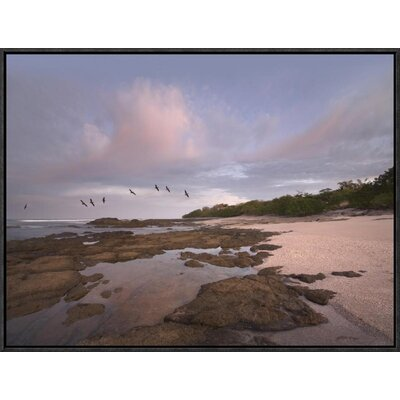 Pelicans over Playa Langosta, Guanacaste, Costa Rica by Tim Fitzharris Framed Photographic Print on Canvas GCF-396360-1824-175